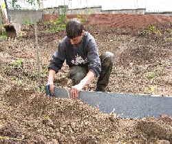 Randgestaltung am folienteich for Garten randgestaltung